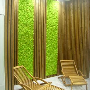 Scandinavian moss for hotels, gyms and spas