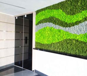 Decorative waved wall from three colors moss