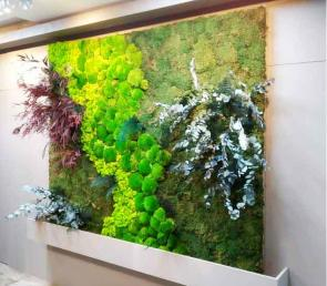 Green wall in the lobby of a private apartment