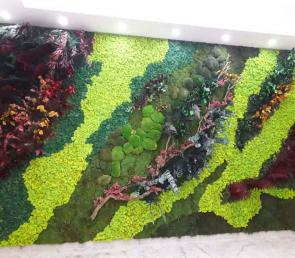 Green wall series MOSS wild at a showroom