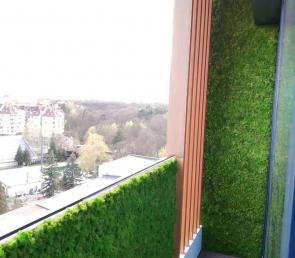 Preserved moss on the terrace of apartment
