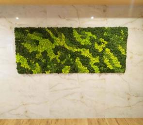 Decorative panels a combination of three colors of moss