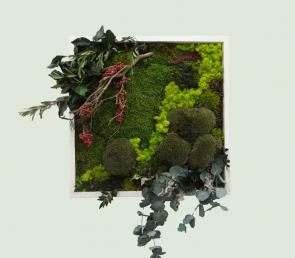 River in the forest - moss wild picture 50X50cm  300.00€