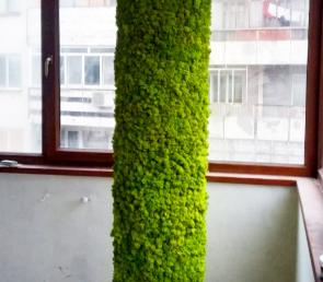 MOSS decor on round column in apartment