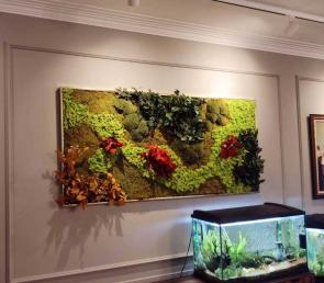 Green picture made of preserved moss and plants